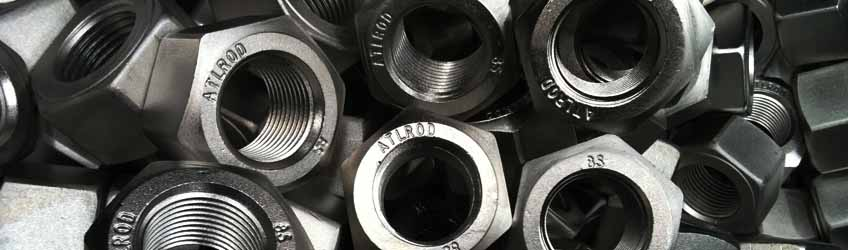 Stainless Steel 254 Smo Fastener Nuts
