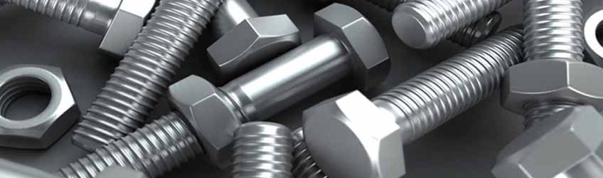 Stainless Steel 304L Fastener Nuts