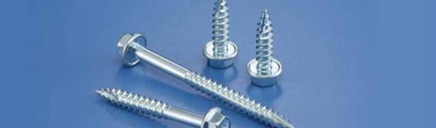 Stainless Steel 316L Screw