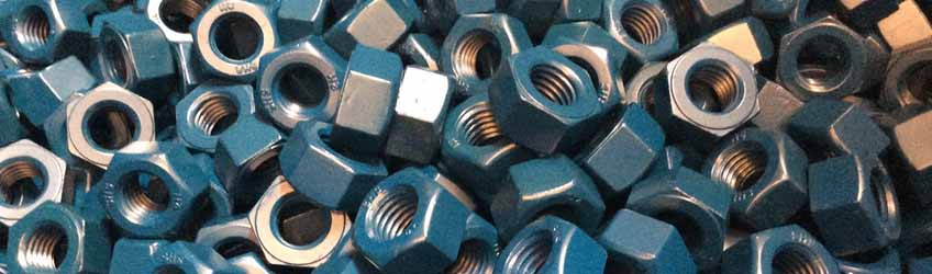 Hastelloy  C2000 Fasteners Nuts