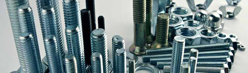 Hastelloy  C4 PTFE coated Fasteners